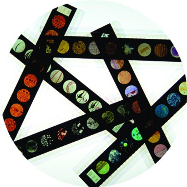 Microslide Intro World of Microscopes (Pk10)